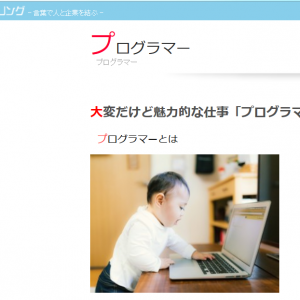 プログラマーサイト